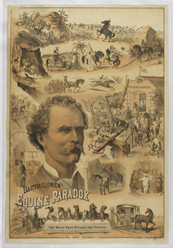 "Poster for Prof. George Bartholomew's ""Equine Paradox!"""